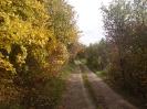 őszi út